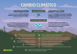 ¿Cómo abordar el cambio climático?